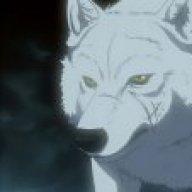 Safariwolf
